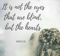 It is not the eyes that are blind, but the hearts - Quran 22-46