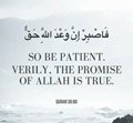 So be Patient, Verily, the promise of Alah is true - Quran 30-60
