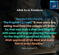 Allah loves kindness - Man enter Paradise upon quenching a dog thirst - Sahih al Bukhari - 173