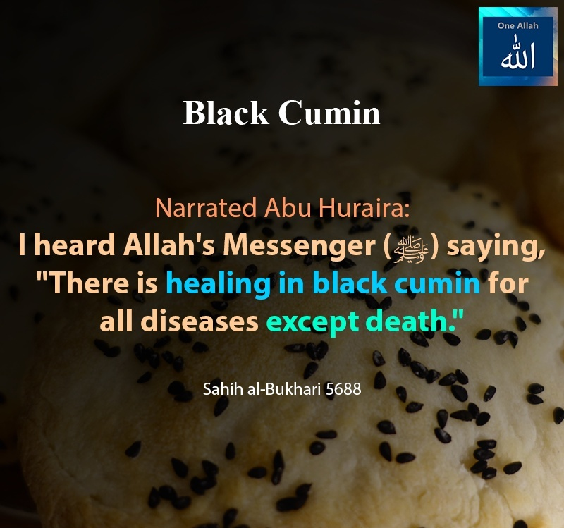 There is healing in black cumin for all diseases except death - Sahih Bukhari - 5688