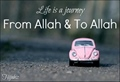 Life is journey from Allah to Allah