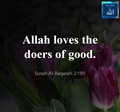 Allah loves the doers of good - Quran - Surah Al Baqarah - 2-195