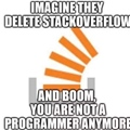 Imagine they delete stackoverflow and boom you are not a programmer anymore