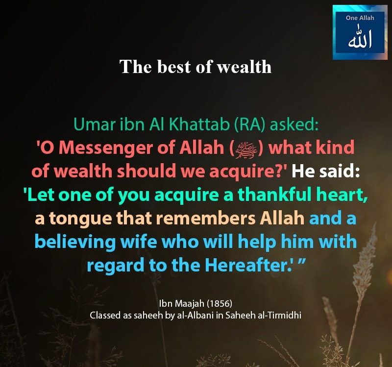 What kind of wealth should we acquire - Hadith - Ibn Maajah - 1856
